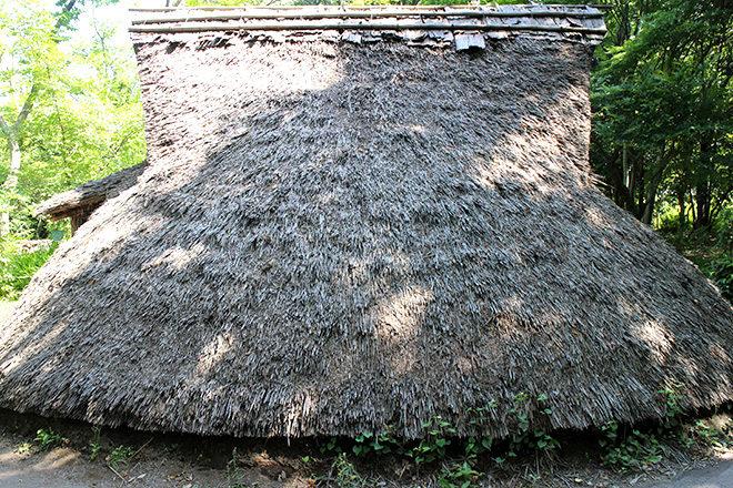 竪穴式住居窓部分横から